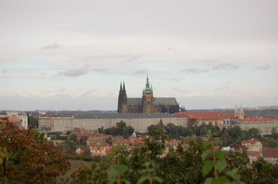 A picture of the Prague Castle and St. Vitus Cathedral